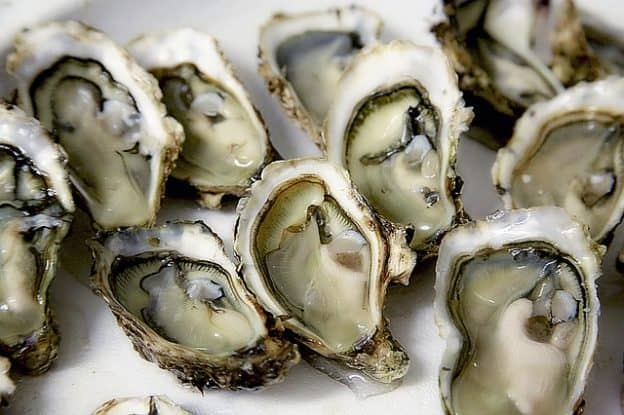 does oyster extract increase testosterone